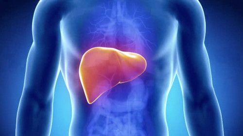 tumore-al-fegato-sintomi-cause-cure